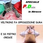 Speciale elezioni regionali in Abruzzo
